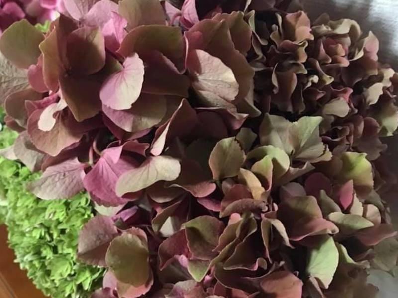 秋色の紫陽花でつくる、ドライフラワーリース。の画像