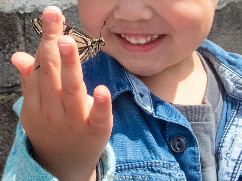 親子で楽しもう!駅から歩く身近な自然観察散歩【3歳からOK】の画像