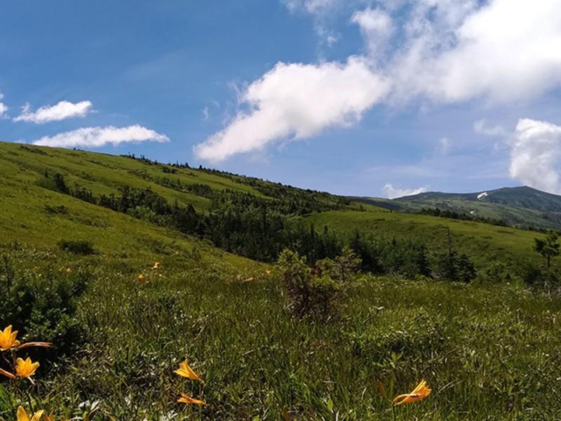 In Nature 山じかんを楽しもう ☆山登り入門講座の画像