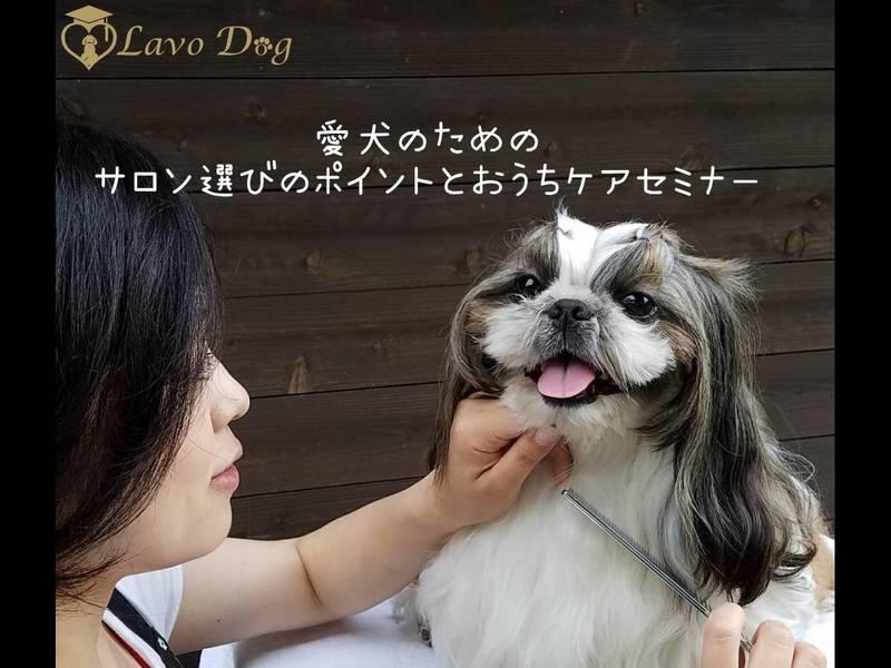 【愛犬のサロン選びのポイントセミナー】の画像