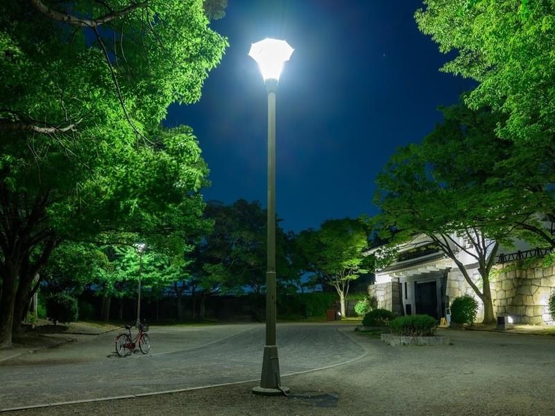 📷夜の光をたっぷり取り込む 長時間露光撮影会の画像