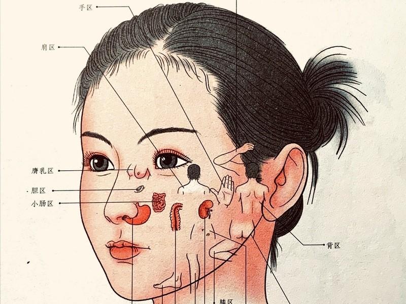 気血水のめぐりにいい、女性が喜ぶ「美顔かっさ」の画像