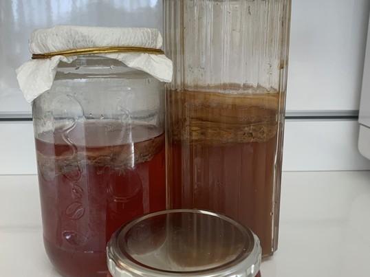 発酵ブームで大人気!腸内環境を整えるコンブチャ講座の画像