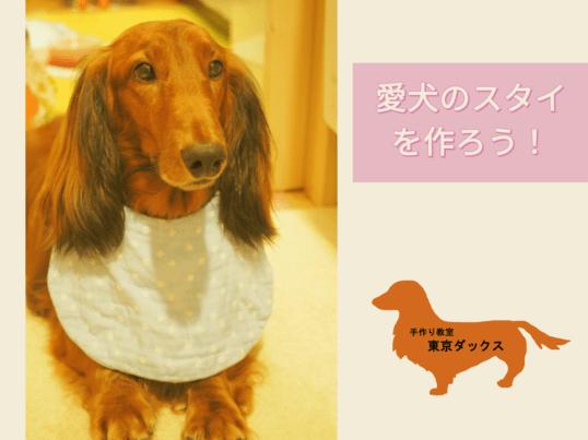 愛犬のスタイを作ろう!の画像