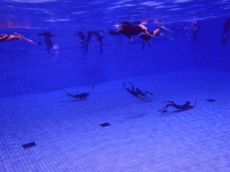 【ダイビングプール】ドルフィンスイム/スキンダイビング練習(辰巳)の画像