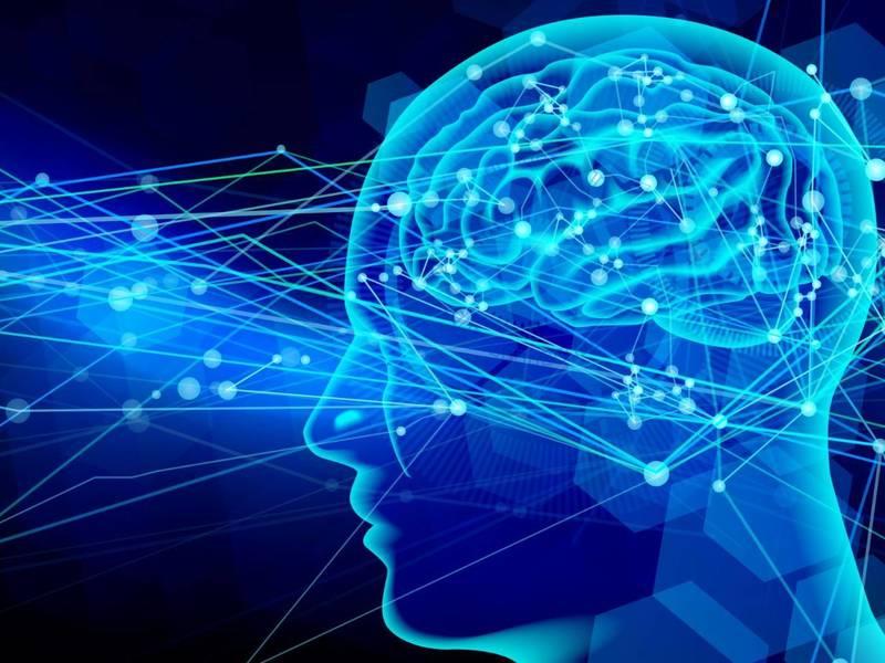 脳の認知機能をフル活用!脳科学時短読書術の画像