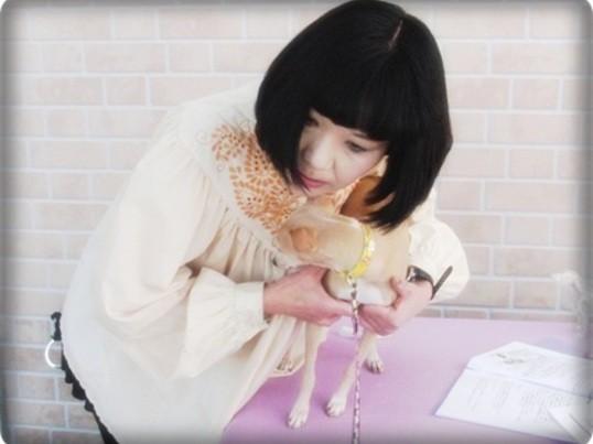 日本ペットマッサージ協会第4期千葉公認アカデミックセミナーの画像