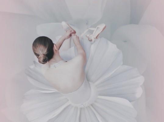 はじめての親子バレエの画像