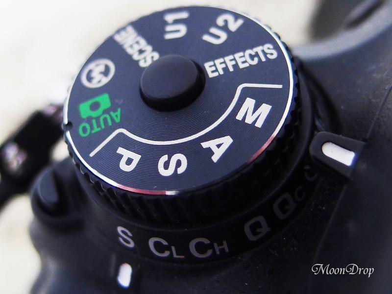グループお写べりレッスン☆カメラ操作2☆明るさについて学ぼうの画像