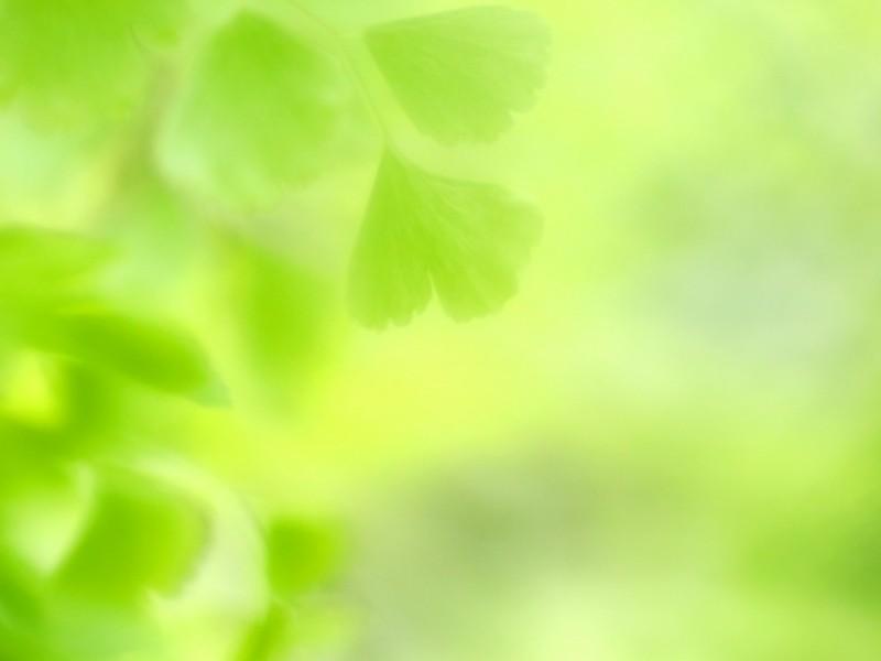 【オンライン開催】はじめてのやさしい瞑想会の画像