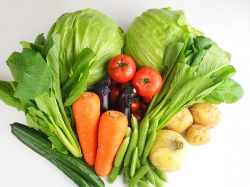 [ZOOM]栄養士が教えるあなたに合った腸活ダイエットの画像