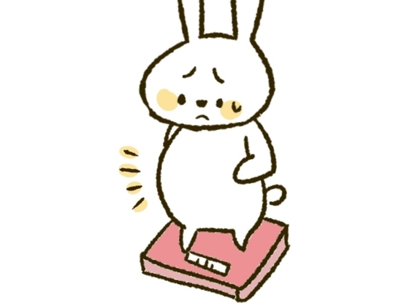 【オンライン講座】8月限定600円!30分で分かる肥満の薬膳!の画像