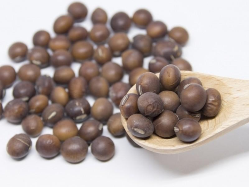 超絶希少:茶大豆玄米麹味噌作り【豆マニアな方にオススメ】2.0kgの画像