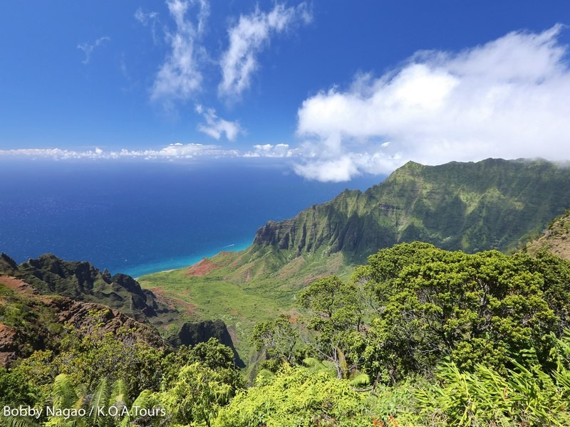 一島まるごと絶景!カウアイ島一周スペシャル・バーチャルツアーの画像