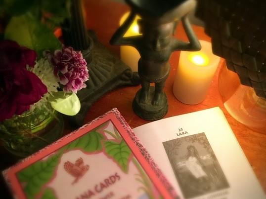 マナカード・動植物カード14枚に絞って確認します。の画像