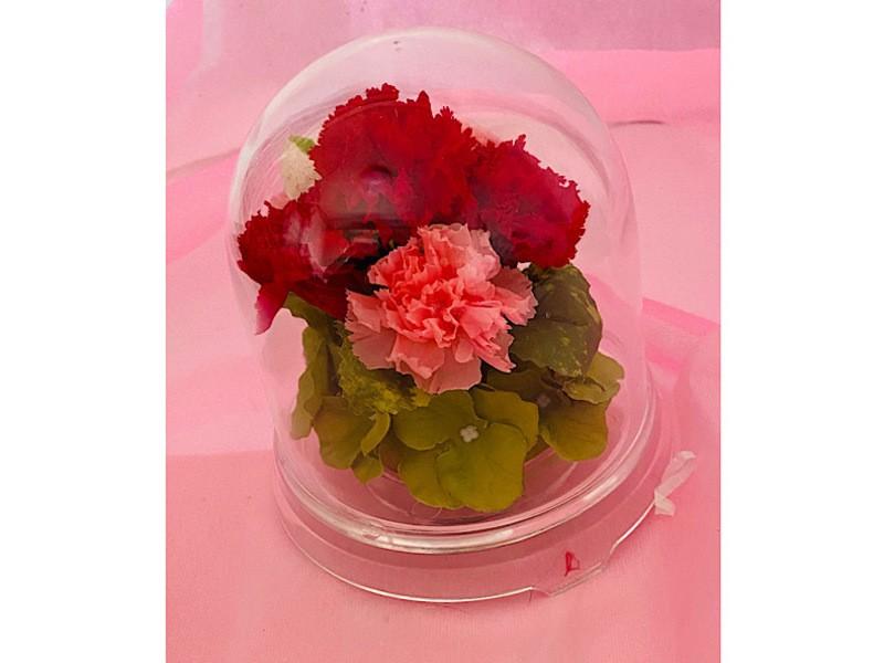 ドームアレンジ!クリアドームの中に好きなお花を咲かせて!の画像