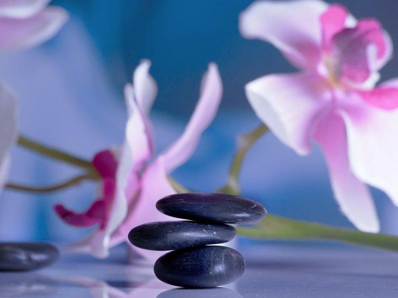 本物の瞑想を学ぶ/瞑想の壁を突破する_マインドフルネス瞑想基礎講座の画像