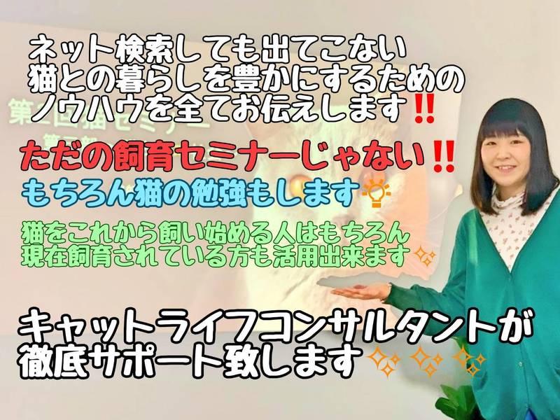 【コース】【オンライン】キャットライフマネジメントセミナーの画像