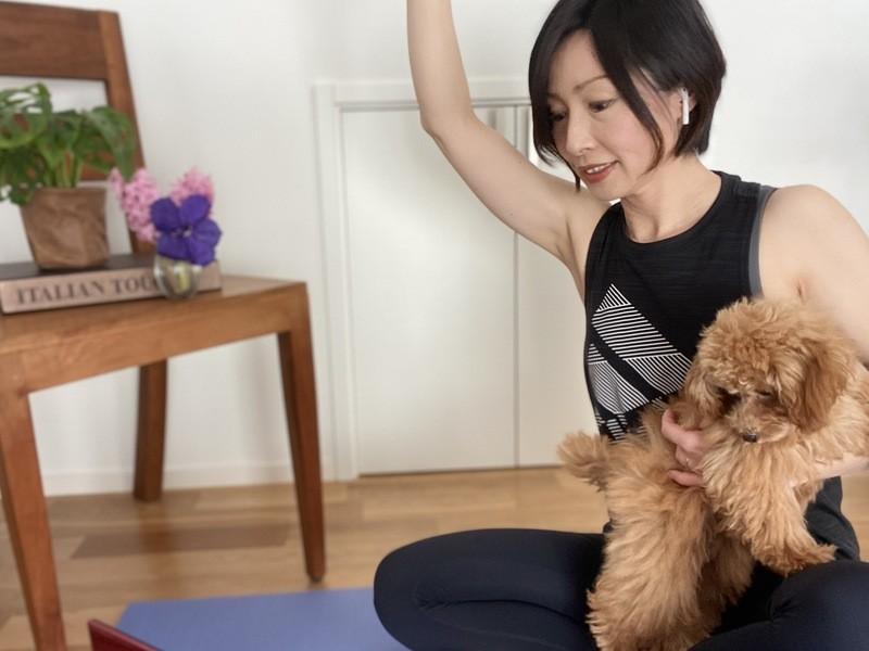 本気で身体を変える!起動から考える体幹トレーニング【オンライン】の画像