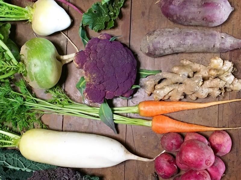 【Farm-to-Table】田中大士シェフのオーガニック味噌仕込の画像
