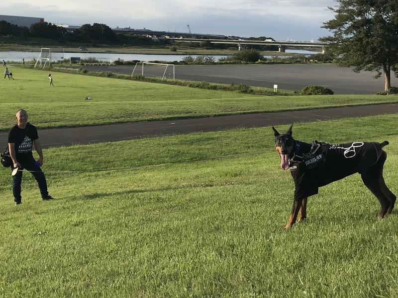 愛犬と一緒に お散歩カメラ会の画像
