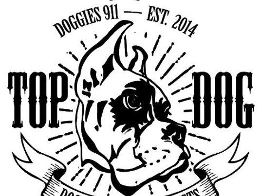 DBS(問題行動専門家)MIYAMAによるもっと犬を知るセミナー①の画像