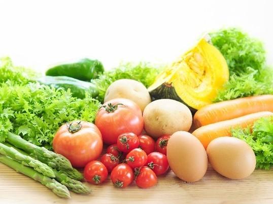 1ヶ月分(朝昼夕)の献立付き!管理栄養士が教える簡単介護食講座の画像