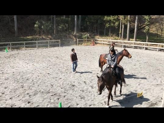 初めての乗馬!異世界を体験の画像