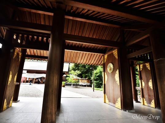 お写ん歩レッスン☆街スナップ 高円寺&阿佐ヶ谷を撮ろう!の画像
