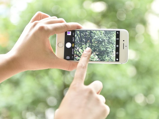 スマホで撮るSNS映えする写真講座&アンチエイジングスムージー講座の画像
