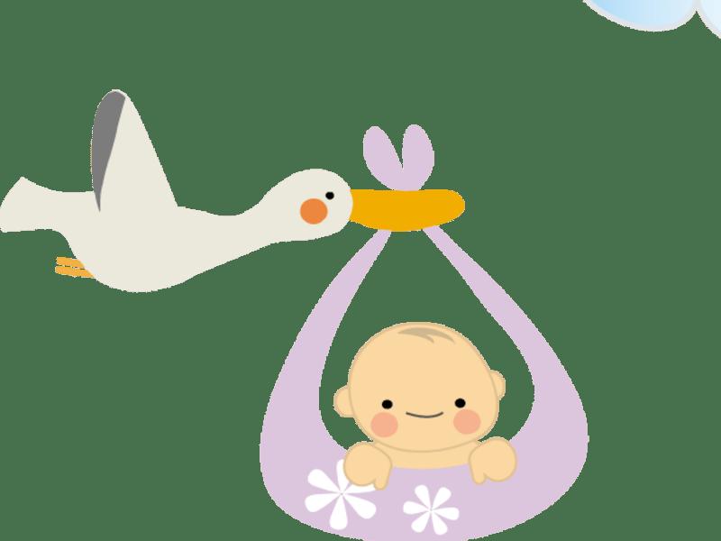 早く元気でかわいい赤ちゃんを腕に抱くその日までに完璧な準備をする!の画像