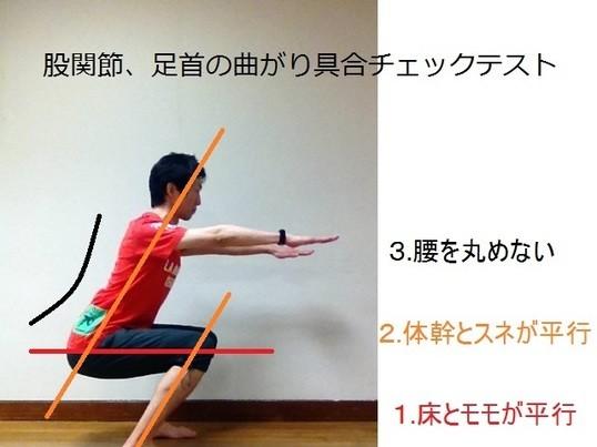 前かがみで作業しても腰痛を最小限にできる姿勢を作る講座の画像