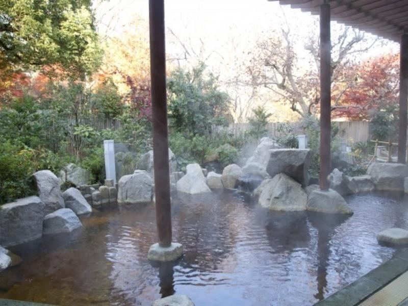東京の温泉を極める!~TOKYO ONSEN MASTERへの道~の画像