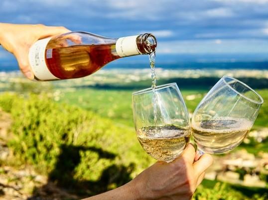 ゼロからはじめるワイン基礎講座〜白ワイン〜の画像