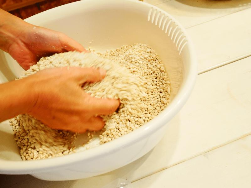 オンライン・親子対応!日本人のためのスーパーフード九州味噌作り教室の画像