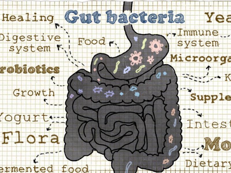 [マンツーマン] 免疫力アップ&便秘改善のためのオイル腸マッサージの画像