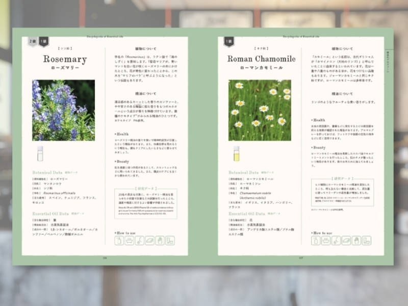 渋谷のカフェで資格取得&女子力アップ♡アロマテラピー検定1級講座の画像