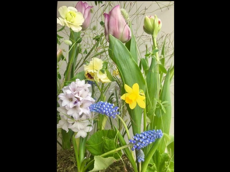 日比谷花壇フラワーデザイナーと作る「春の球根植物フラワーレッスン」の画像