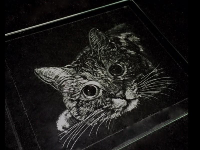 グラスカービング ❤︎ワンちゃんネコちゃんをガラスウェアに彫る講座の画像