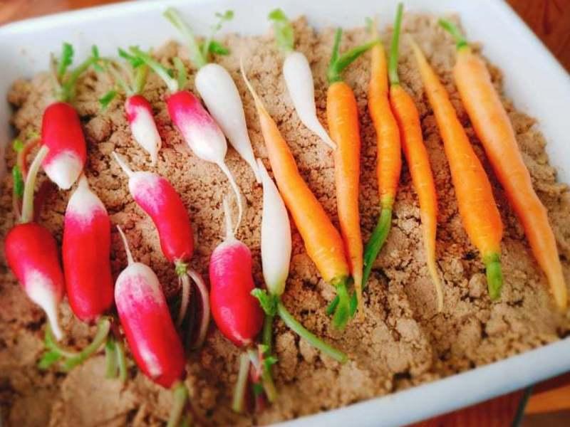発酵力を借りて腸内環境を整えるにおわない食べる糠床つくり(軽食付)の画像