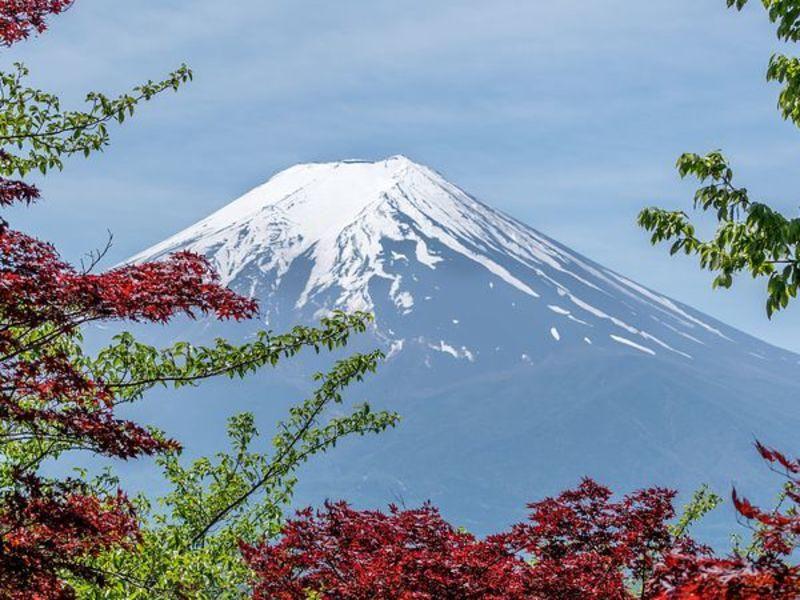 【外国人・留学生向け】日本語でレポートや研究計画書をかいてみよう!の画像