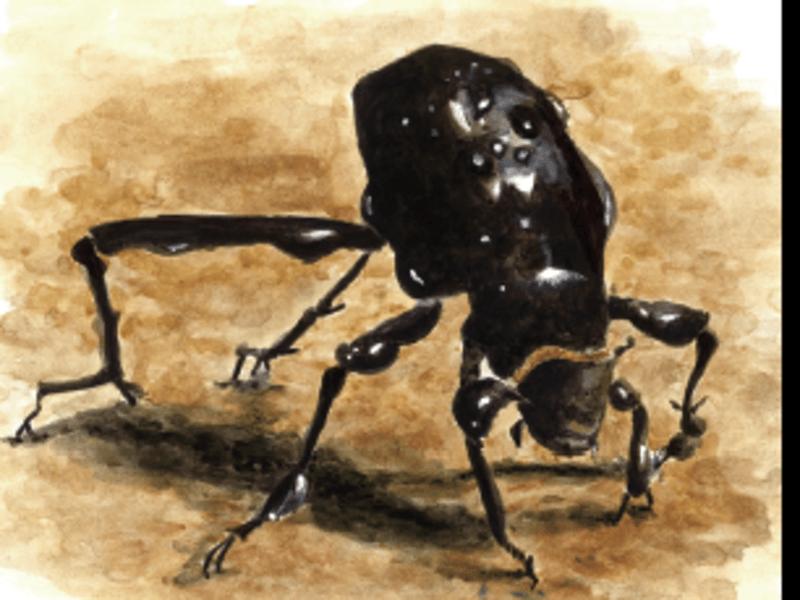 昆虫の魅力の秘密とは?子供向けの本に書いてない虫たちの秘密を紹介!の画像