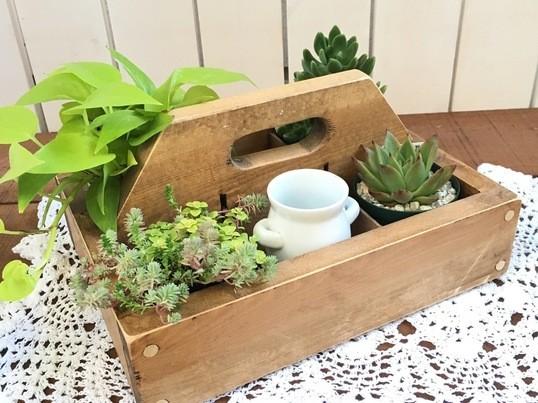 【親子DIY教室】オリジナルツールボックスの画像