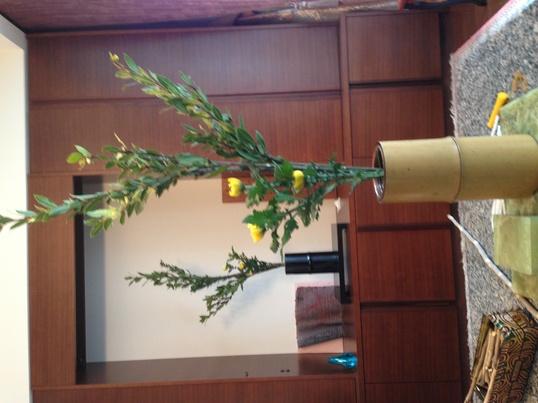 華道歴50年以上の実績を持つ講師が教えるアットホームな生け花教室の画像