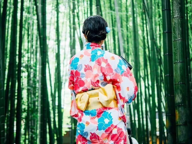 手ぶらで日本舞踊【2回目以降の方向け】の画像