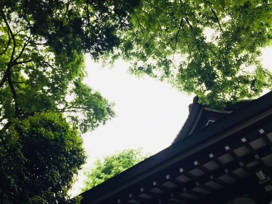 【オンライン開催】古事記をより身近に✿神社まなび講座の画像