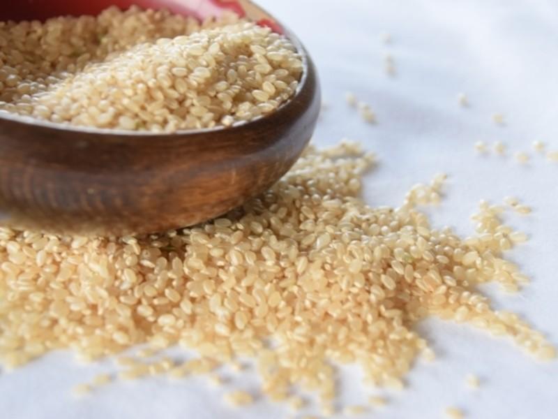 発酵スイーツ部『玄米麹甘酒で作るティラミス』1ホールお持ち帰りの画像