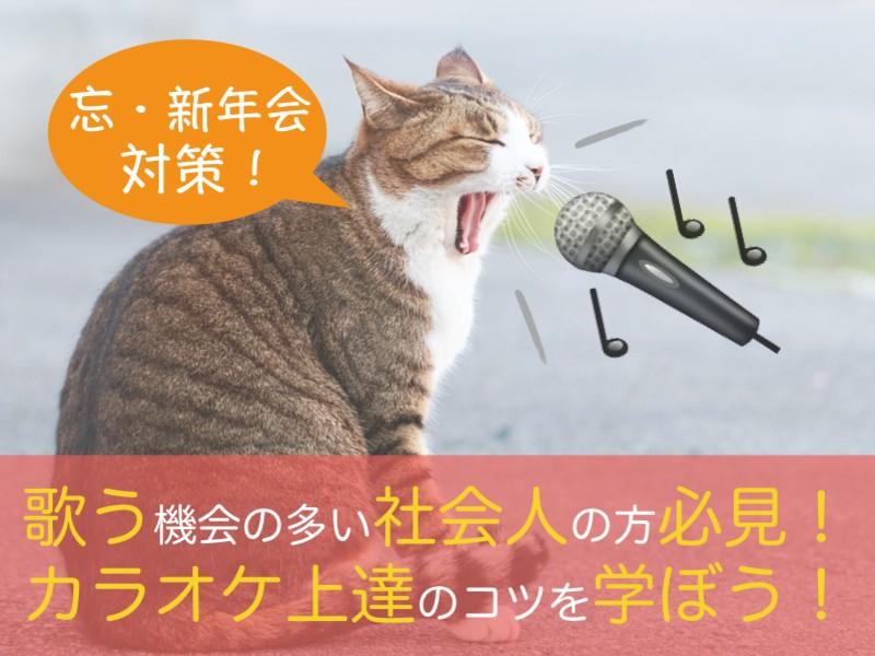 【超入門】カラオケ精密採点得点アップ方法&歌唱レッスン♪の画像