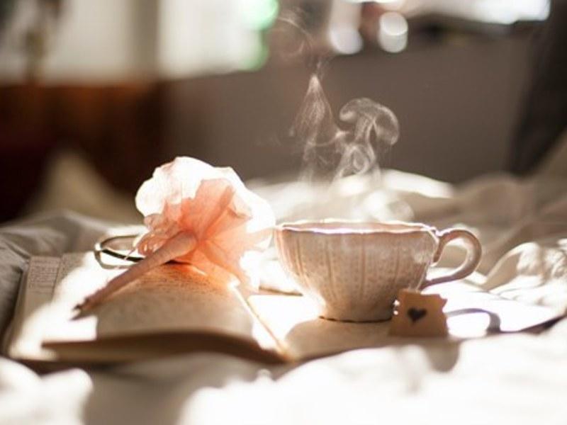 【初心者・お一人様歓迎】ヨガ・呼吸法・ガイド付き瞑想とお茶づくりの画像
