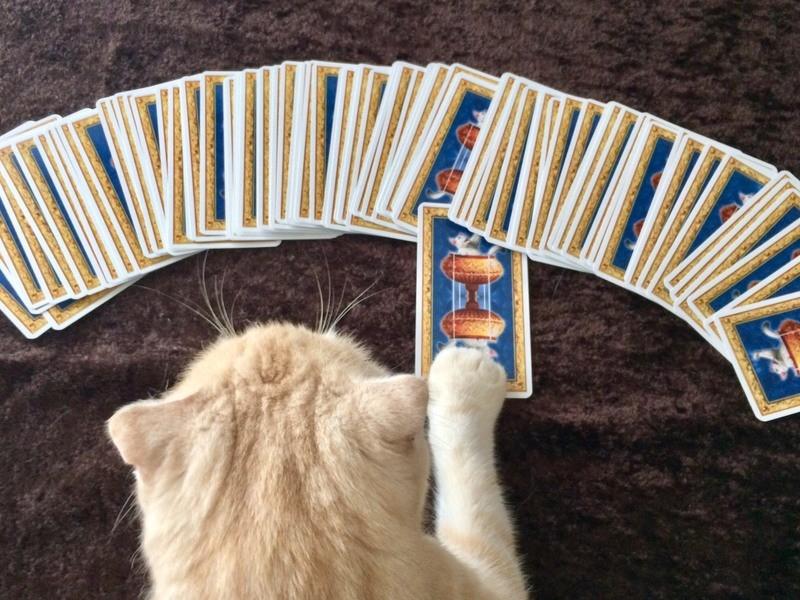 深層心理を読み解く【神秘のケルト十字・白猫タロット中級】実践!の画像